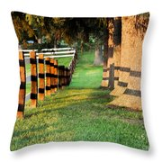 Shadow Fencing Throw Pillow