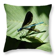 Shadow Fly Throw Pillow