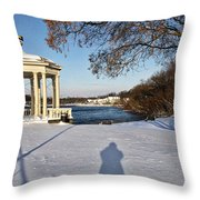 Shadow In The Snow Throw Pillow