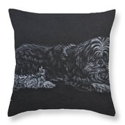 Shadow Throw Pillow by Michele Myers