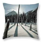 Shadow Of Former Selves Throw Pillow