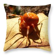 Shadow Of Intent Throw Pillow
