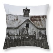 Shadow Of The Dog Throw Pillow