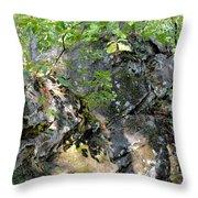Shadow Rock Throw Pillow