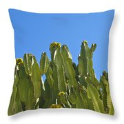 Shadow Shapes Vi Throw Pillow