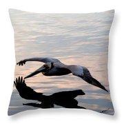 Shadow Skimmer Throw Pillow