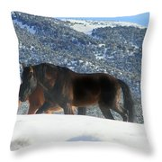 Shadow Stallion Of The Great Basin  Throw Pillow