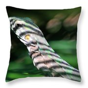 Shadow Stripes Throw Pillow