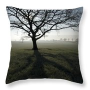 Shadow Tree Throw Pillow