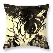 Shadow Tree Throw Pillow