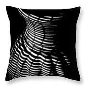 Shadow Urn Throw Pillow