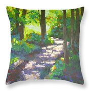 Shadowed Path Throw Pillow