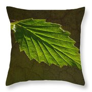 Shadows And Light Of The Leaf Throw Pillow
