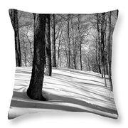 Shadows At Mccauley Mountain Throw Pillow