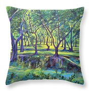 Shadows At Noon - Indian Landscapes Throw Pillow