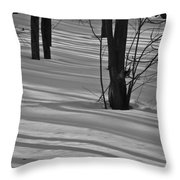 Shadows In Boyertown Park Throw Pillow