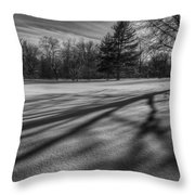 Shadows In The Park Throw Pillow