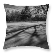 Shadows In The Park Square Throw Pillow
