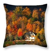 Shadows Of A Colorful Past Throw Pillow