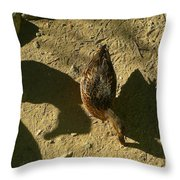 Shadows Of A Mallard Duck Throw Pillow