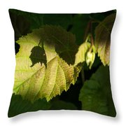 Shadows Of New Life Throw Pillow
