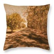 Shadows On Autumn Lane Throw Pillow