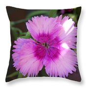 Shadows On Pink Throw Pillow