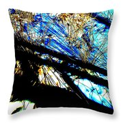 Shadowy Snowy Dune Throw Pillow