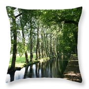 Shady Creek Throw Pillow