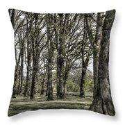 Shady Grove Throw Pillow
