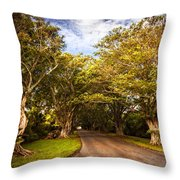 Shady Lane Throw Pillow
