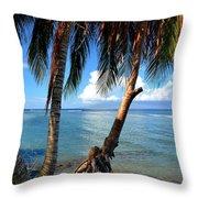 Shady Palm Beach Throw Pillow