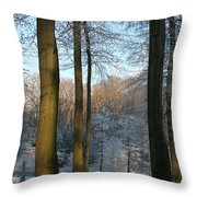 Light And Shadows In Wintertime Throw Pillow