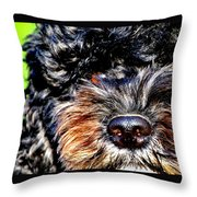 Shaggy Black Dog Throw Pillow