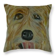 Finigan I Throw Pillow by Marie Bulger