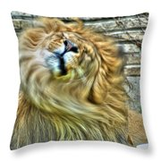 Shake It Off Lazy Boy At The Buffalo Zoo Throw Pillow