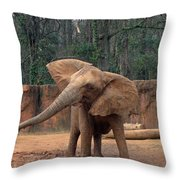Shake It Up Baby Now Throw Pillow