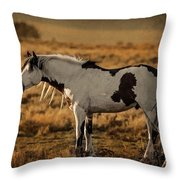 Shaman At Sundown Throw Pillow