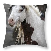 Shaman Portrait Throw Pillow