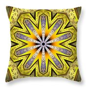 Shamanic Dreams Throw Pillow by Derek Gedney