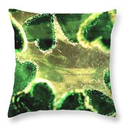 Shamrocks And Gold Throw Pillow