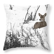 Share The Land Throw Pillow