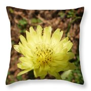 Shared Beauty Throw Pillow