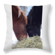 Best Buddies Sharing A Delicious Meal Throw Pillow