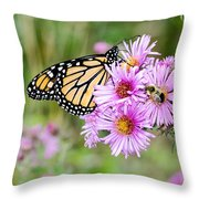 Sharing Nicely  Throw Pillow