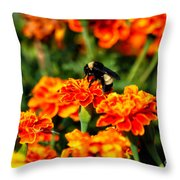 Sharing The Nectar Of Life 02 Throw Pillow