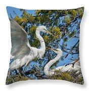 Sharing The Nest Throw Pillow