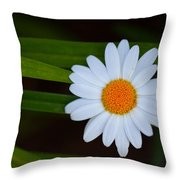 Sharing The Space Throw Pillow