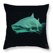 Shark-09441 Throw Pillow