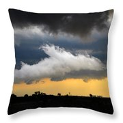 Shark Cloud Throw Pillow by David Lee Thompson